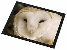 White Barn Owl Black Rim Glass Placemat Animal Table Gift, AB-O20GP