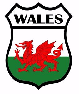 2 x Wales Shield Flag Decal Car Motorbike Laptop Self Adhesive Backed Sticker