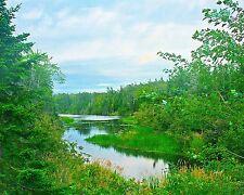 Graham's Pond, Pictou, Nova Scotia, 8x10 photograph
