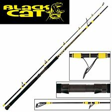 Black Cat Passion Pro DX Boat Spin 2,40m 50-190g Welsrute Bootsangeln Wallerrute