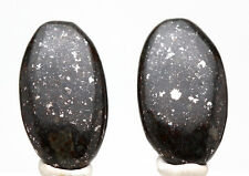 NWA 869 Stone Meteorite CARVING Cabochon Earring PAIR Chondrite Gem Matched Rock