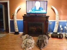 (W-ELE-1) RARE PAIR aceh bovine bone REPLICA ELEPHANT TUSK Asian carved Pillars