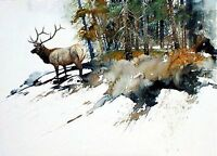 High Country Elk by Morten Solberg Wildlife Animals SN LE Canvas Giclee 24x32 🦌