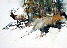 High Country Elk by Morten Solberg Wildlife Animals SN LE Lithograph Paper 18x24