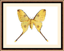 Butterfly 8528, Cross Stitch Kit