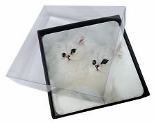 4x White Chinchilla Kittens Picture Table Coasters Set in Gift Box, AC-44C