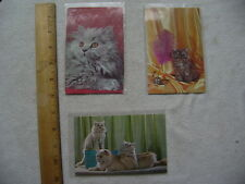 Three long hair cat postcards - 50's/60's glossy cards, unused