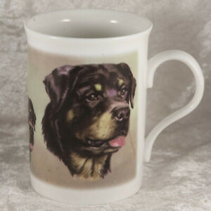Windsor bone china mug drinking cup rottweiler working breed dog  collectable