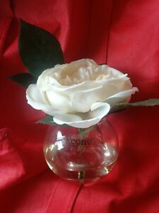 BRAND NEW PEONY ROSE IN GLASS
