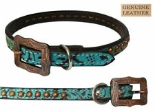 Showman Couture TEAL Filigree COPPER Stud Genuine LEATHER Adjustable DOG COLLAR