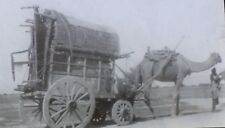 Camel Pulling Cart/Wagon, Magic Lantern Glass Slide, Probably India, NO LABEL