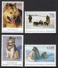 AAT 1994 The Last Huskies (Dogs) in the Antarctic
