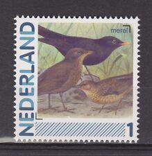 NVPH Nederland Netherlands MNH singing bird merel blackbird merle mirlo 2011
