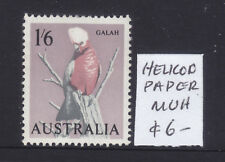 New listing 1'6 Galah Helicon Paper Muh