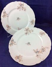 "Haviland & Co French Limoges Blue flower 8.5"" dishes 2 vintage plates Dish"