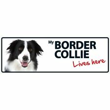Border Collie Lives Here Plastic Sign