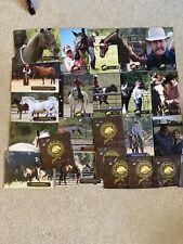 24 Parelli Natural Horsemanship Savvy Club Lessons Dvds and Binder