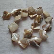 STRAND CREAM SHELL NUGGET BEADS ~ 17-18mm