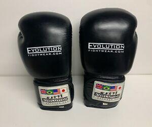 EVOLUTION FIGHTWEAR.COM Boxing Gloves - Black 12oz - TRAINING / SPARRING