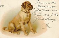 POSTCARD   ANIMALS   DOG   MASTIFF   Tuck
