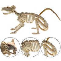 Halloween Rat Skeleton Bones Simulative for Horror Haunted House Decoration