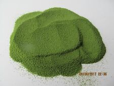 1 KG Light Verde Piombo Peso Stampo Polvere di rivestimento