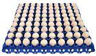 6 RITE FARM PRODUCTS 90 EGG PLASTIC TRAYS FOR QUAIL PIGEON DOVE BIRD FLAT CARTON