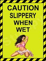 """Caution Slippery When Wet  Metal Sign 9"""" x 12"""""""