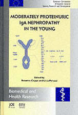 Moderately Proteinuric IgA Nephropathy in the Young (Biomedical and Health Resea