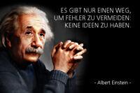 Albert Einstein Spruch 30 Blechschild Schild gewölbt Metal Tin Sign 20 x 30 cm
