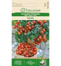 TOMATO VILMA DELICIOUS DWARF BALCONY BUSH ROUND SMALL RED FRUIT SEEDS 100-140