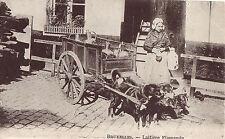 CPA - BELGIQUE - BRUXELLES - Attelage de chiens - Laitière flamande.