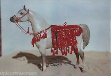 KIT Show Arabian Costume Traditional size 1/9-1/10th Scale  Breyer, Stone