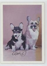 1971 Burgerbits Dog Food Pembroke Welsh Corgi #16 2h8