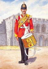 Military Art Postcard Drummer The Royal Hampshire Regiment 1981 #33-5
