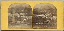 Paysage Ruisseau Montagne Photo Stereo Stereoview Vintage Albumine