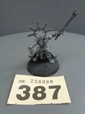 WARHAMMER AGE OF Sigmar Guerrieri del Caos Lord Stregone Hero 387