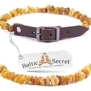 A Baltic Secret Amber Collar For Small Dogs And Cats / Natural Flea And Tick