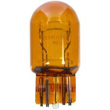 Turn Signal Light Bulb Front Wagner Lighting BP7443NA