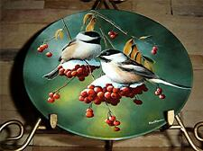 The Chickadee Birds Of Your Garden Collection by Kevin Daniel Knowles Plate