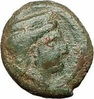 THERMAI in SICILY 407BC HERA & HERCULES Rare Authentic Ancient Greek Coin i24878