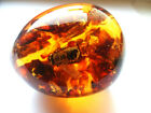 Egg - a souvenir with Baltic amber and inside - FOSSIL INSECTS