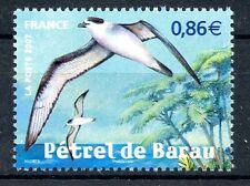 STAMP / TIMBRE FRANCE  N° 4036 ** FAUNE / PETREL DE BARAU A LA REUNION