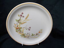 Unboxed 1980-Now Marks & Spencer Pottery Dinner Plates