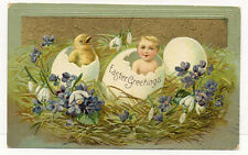 1909 CHICK & BABY N LARGE EGGS EMBOSSED POSTCARD PC6817