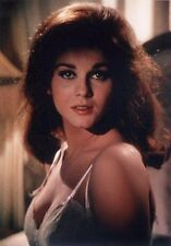 Ann Margret  Moments InTime Series - Rare and Original from Negative Photo am001