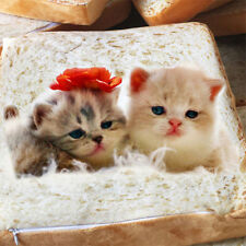 Creative Pet Mat Cat Dog Bed Washable Cushion Pillow Bread Toast Mattress 3265