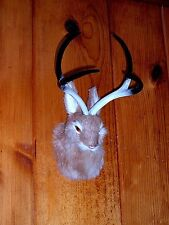 JACKALOPE Head Mount REALISTIC FURRY ANIMAL REPLICA Prop 03t FREE SHIPPING USA