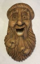 Woods Spirit rustic St. Francis Birdhouse Whimsical Decor Wall Hanger Outdoor