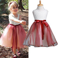 Baby Girl Tutu Lace Princess Dress Flower Formal Party One-Piece Kids Skirt 2-10